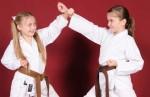 Dento Kai Karate