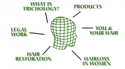 Trichology Hair Loss and Scalp Clinic